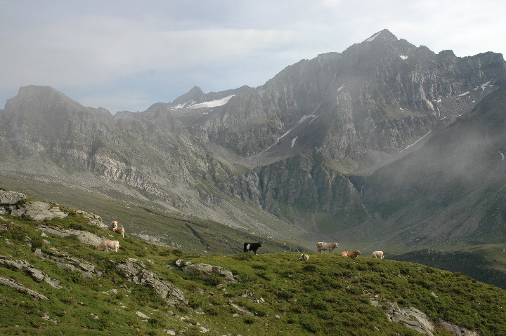 in Val Malvagia