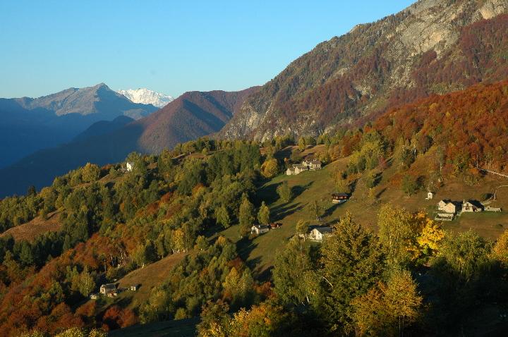oberhalb Lago Maggiore mit Monte Rosa im Hintergrund