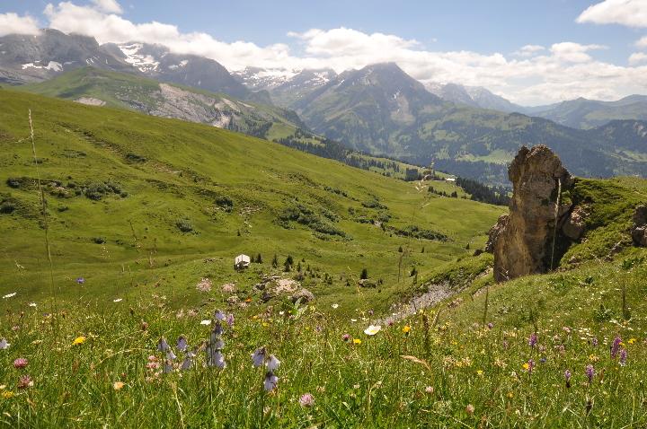 Wildhorn und Diableret Gruppe vom Trütlisbergpass