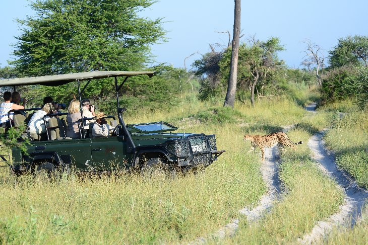 Landrover of Wildernesss Safaris with cheetah