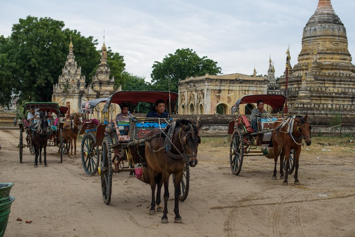 horse-drawn carriage ride to the pagodas